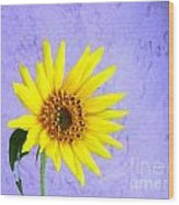 Lone Yellow Daisy Wood Print
