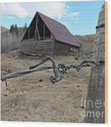 Lonely Barn Wood Print by Marcus Maiden