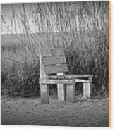 Lonely Beach Bench Wood Print