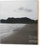 Lonely Beach In Costa Rica Wood Print