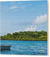 Lonely Boat Wood Print by Luis Alvarenga