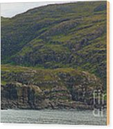 Lonely Coast 1 Wood Print