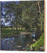 Lonely Creek Wood Print