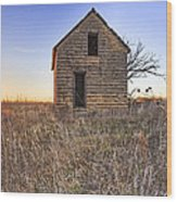 Lonely Homestead Wood Print