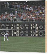 Lonely In Center Field Wood Print by Dave Hall