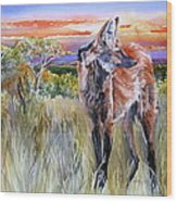 Lonely Lobo Sunset Wood Print