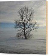 Lonely Prairie Wood Print