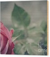 Lonely Rose 2  Wood Print