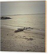 Lonely Seashore Wood Print