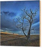 Lonely Sentinel Wood Print