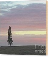 Lonely Sunset  Wood Print