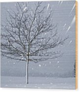Lonely Tree In Snow Bavaria Wood Print