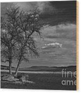 Lonesome Tree Wood Print