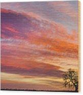 Lonesome Tree Sunrise Wood Print