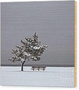 Lonesome Winter Wood Print