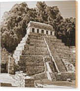 Long Ago In Mayan Palenque Wood Print