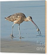 Long-billed Curlew Catching Crab Wood Print