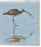Long-billed Curlew With Crab Wood Print