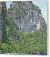 Long Boat Tour - Phi Phi Island - 0113207 Wood Print