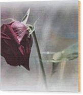 Red Rose Still Life Wood Print