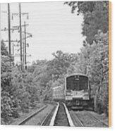 Long Island Railroad Pulling Into Station Wood Print