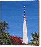 Long Island's Vietnam Memorial Wood Print