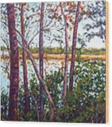 Long Lake Wood Print