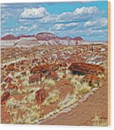 Long Logs Trail In Rainbow Forest In Petrified Forest National Park-arizona  Wood Print