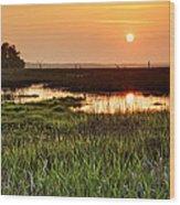 Long Marsh View Wood Print