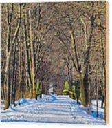 Long Path Ahead Wood Print