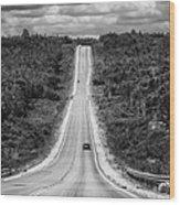 Long Road Ahead  8923bw  Wood Print