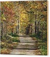 Long Shadows Wood Print