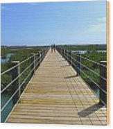 Long St. Augustine Marsh Dock Wood Print