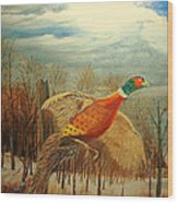 Long Tail Pheasant Wood Print