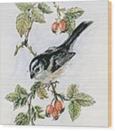 Long Tailed Tit And Rosehips Wood Print