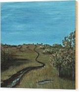 Long Trail Wood Print