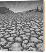 Long Walk On A Hot Day Wood Print by Mike McGlothlen
