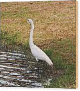 Long White Strides Wood Print