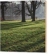 Long Winter Shadows Wood Print