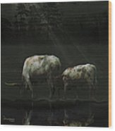 Longhorns Reflections At The Pond Wood Print