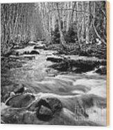 Longmire Stream 5bw Wood Print