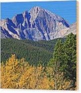 Longs Peak Autumn Aspen Landscape View Wood Print