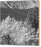 Longs Peak Autumn Scenic Bw View Wood Print