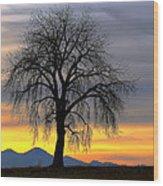 Longs Peak Sunset Wood Print by Rebecca Adams