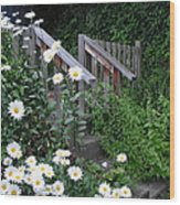 Look After The Daisies Wood Print