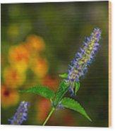 Look At Me Garden Wood Print