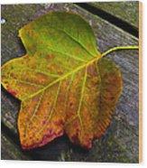 Look Down 3 Wood Print