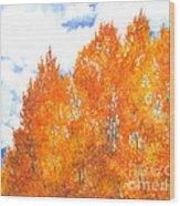 Look To The Heavens Wood Print