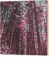Lookin Up Wood Print