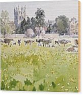 Looking Across Christ Church Meadows Wood Print by Lucy Willis